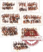 Scientific lot no. 8 Attelabidae (124 pcs)
